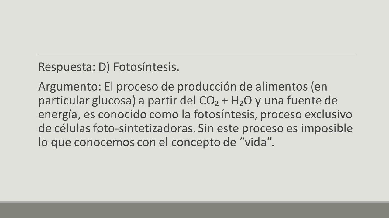 Respuesta: D) Fotosíntesis.