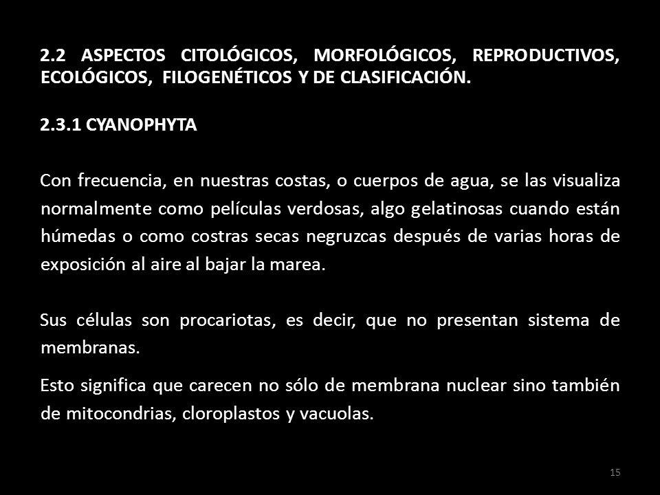 2.2 ASPECTOS CITOLÓGICOS, MORFOLÓGICOS, REPRODUCTIVOS, ECOLÓGICOS, FILOGENÉTICOS Y DE CLASIFICACIÓN.
