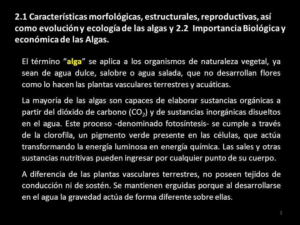 2.1 Características morfológicas, estructurales, reproductivas, así como evolución y ecología de las algas y 2.2 Importancia Biológica y económica de las Algas.