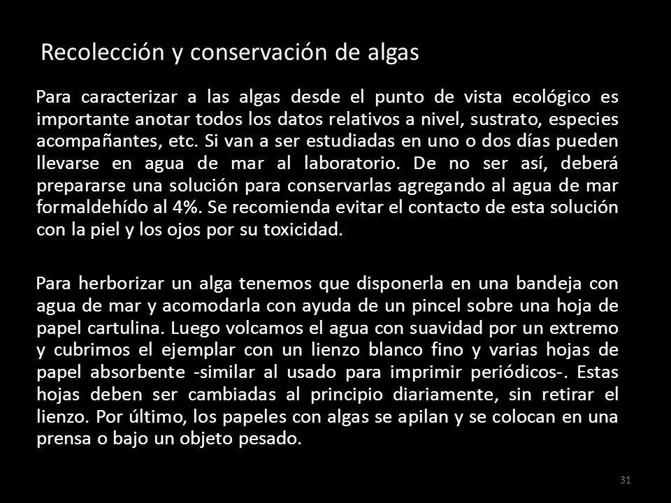 Recolección y conservación de algas