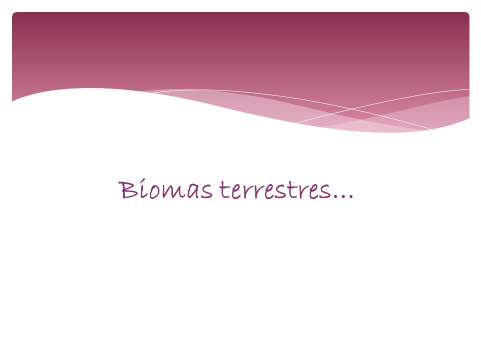 Biomas terrestres…