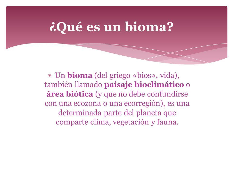 ¿Qué es un bioma