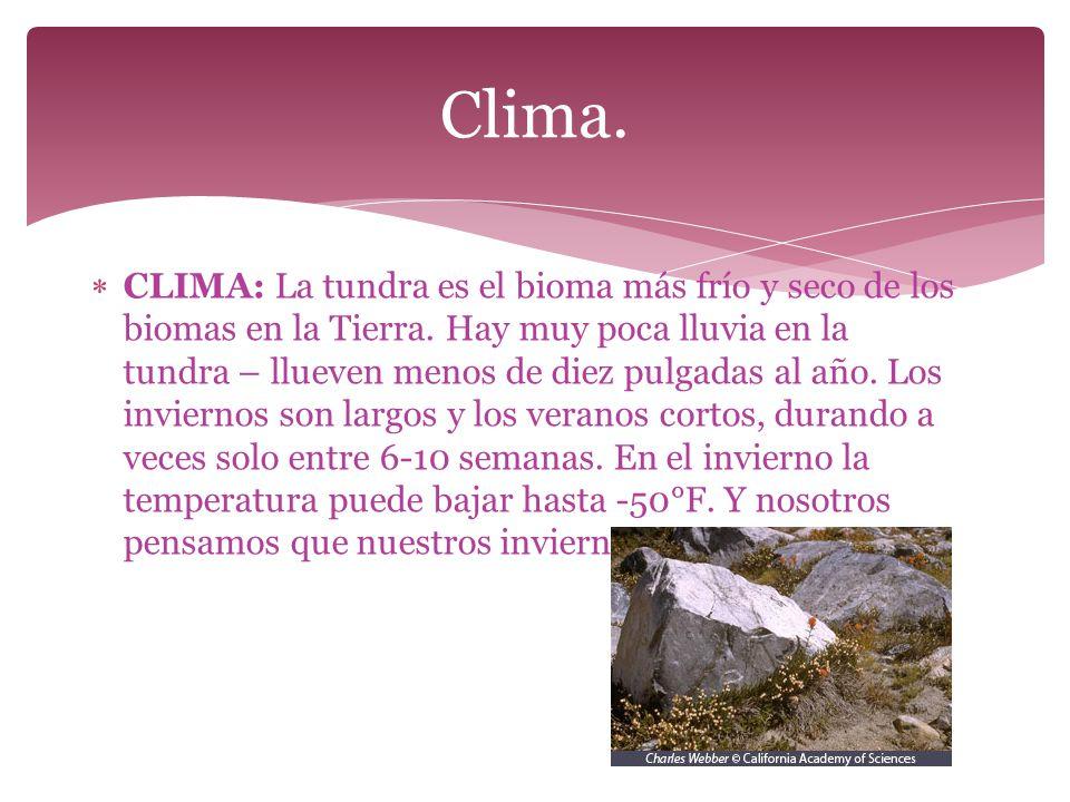Clima.