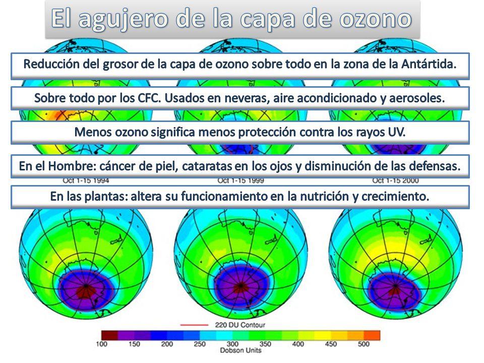 Menos ozono significa menos protección contra los rayos UV.