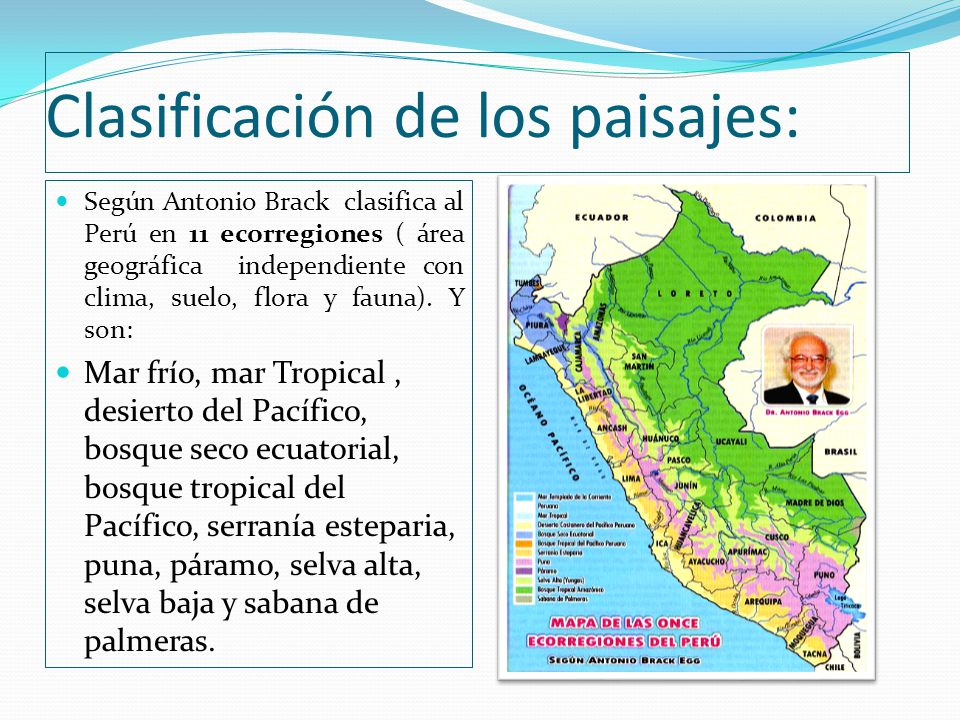 Clasificación de los paisajes: