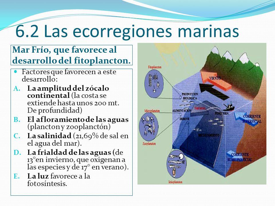 6.2 Las ecorregiones marinas