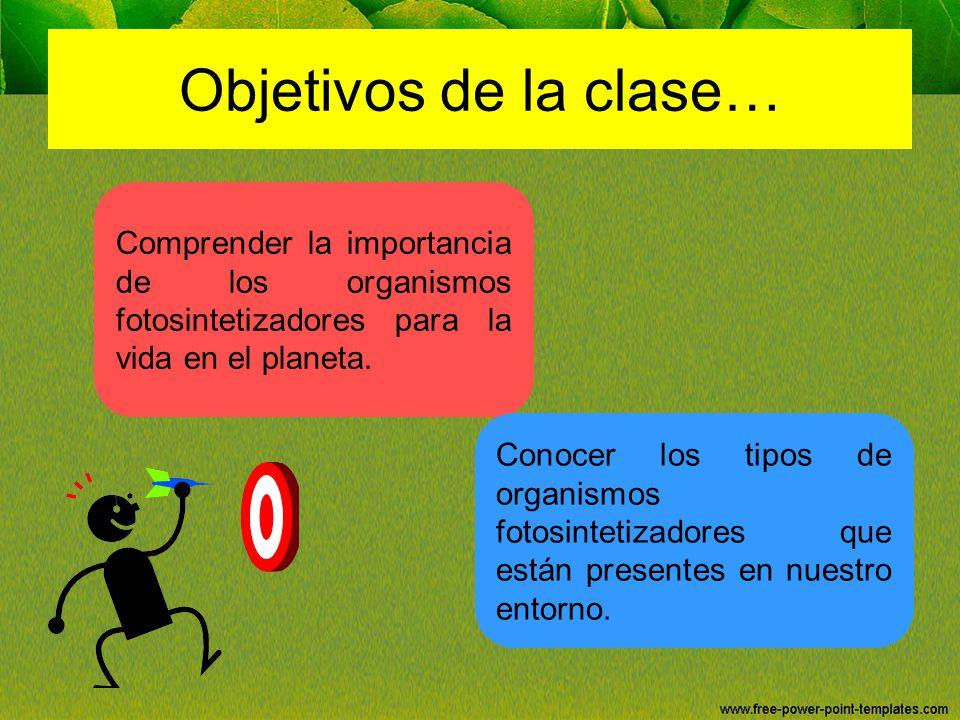 Objetivos de la clase… Comprender la importancia de los organismos fotosintetizadores para la vida en el planeta.