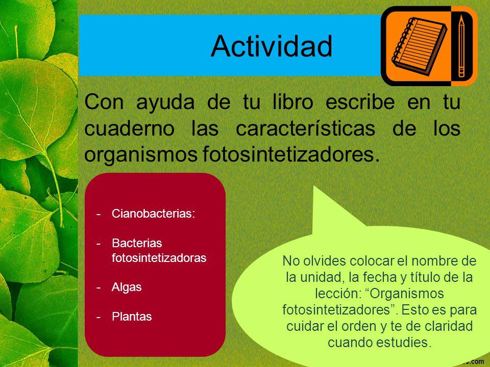 Actividad Con ayuda de tu libro escribe en tu cuaderno las características de los organismos fotosintetizadores.