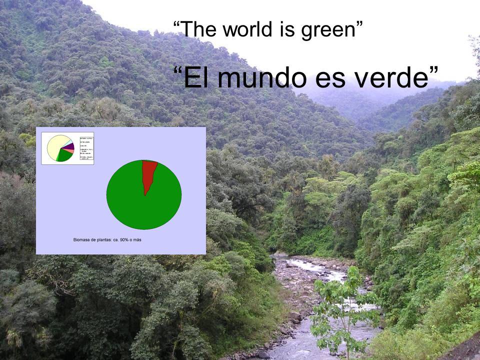 The world is green El mundo es verde