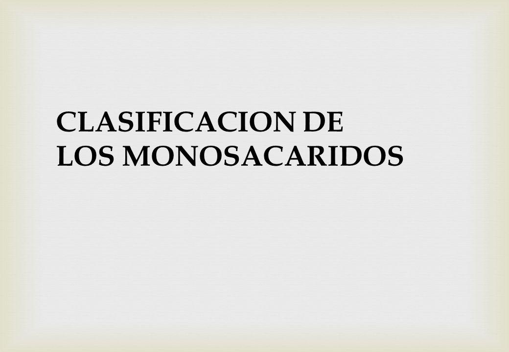 CLASIFICACION DE LOS MONOSACARIDOS
