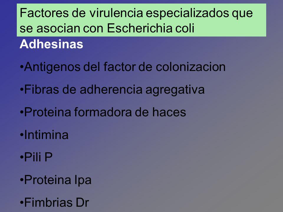 Factores de virulencia especializados que se asocian con Escherichia coli
