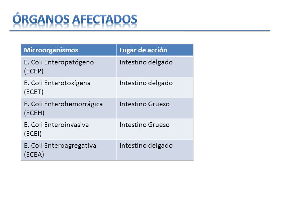 Órganos afectados Microorganismos Lugar de acción