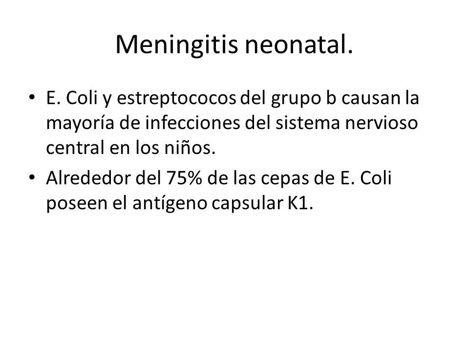 Meningitis neonatal. E. Coli y estreptococos del grupo b causan la mayoría de infecciones del sistema nervioso central en los niños.