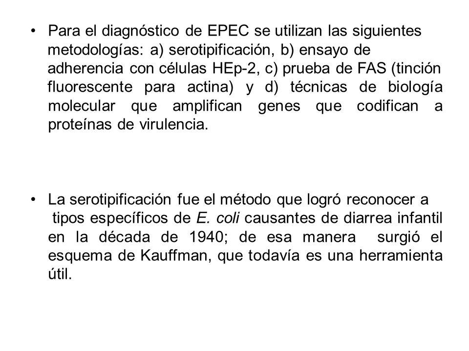 Para el diagnóstico de EPEC se utilizan las siguientes