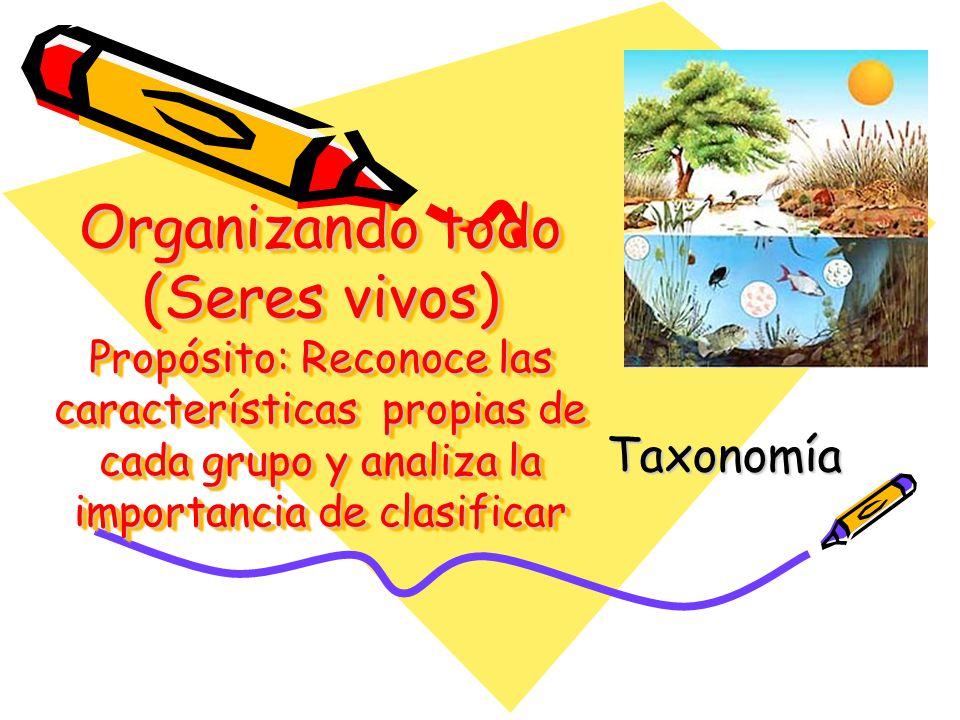 Organizando todo (Seres vivos) Propósito: Reconoce las características propias de cada grupo y analiza la importancia de clasificar