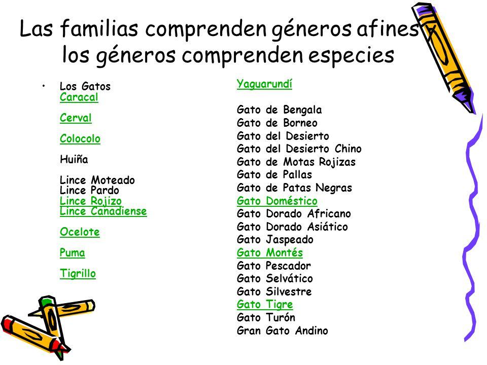 Las familias comprenden géneros afines y los géneros comprenden especies