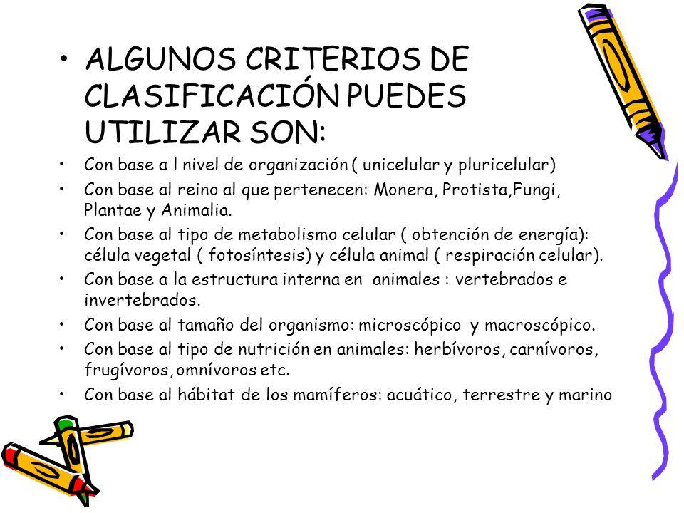 ALGUNOS CRITERIOS DE CLASIFICACIÓN PUEDES UTILIZAR SON: