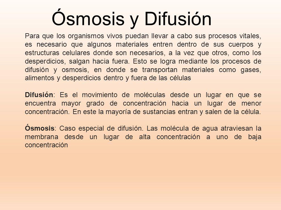 Ósmosis y Difusión