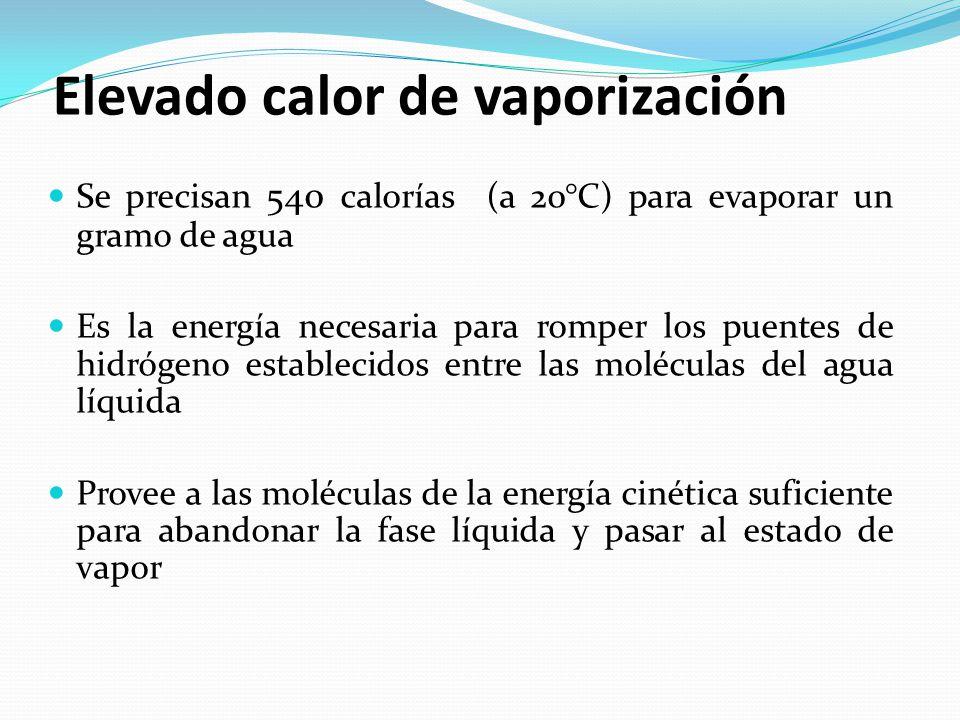 Elevado calor de vaporización
