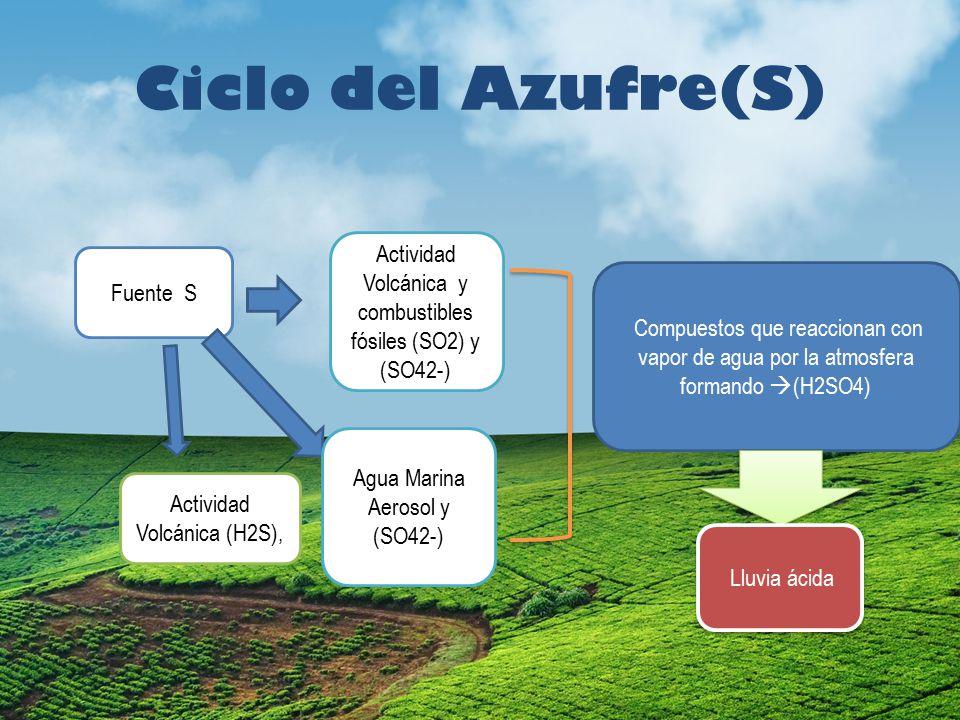 Ciclo del Azufre(S) Actividad Volcánica y combustibles fósiles (SO2) y (SO42-) Fuente S.
