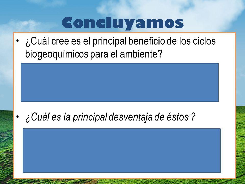 Concluyamos ¿Cuál cree es el principal beneficio de los ciclos biogeoquímicos para el ambiente.