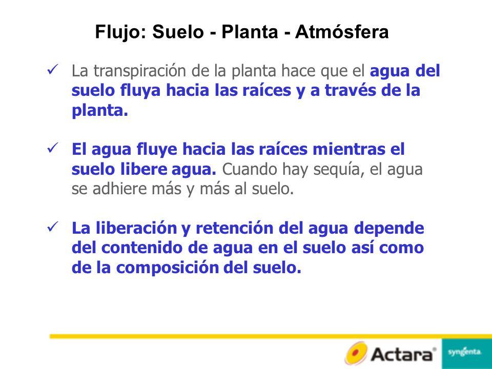 Flujo: Suelo - Planta - Atmósfera