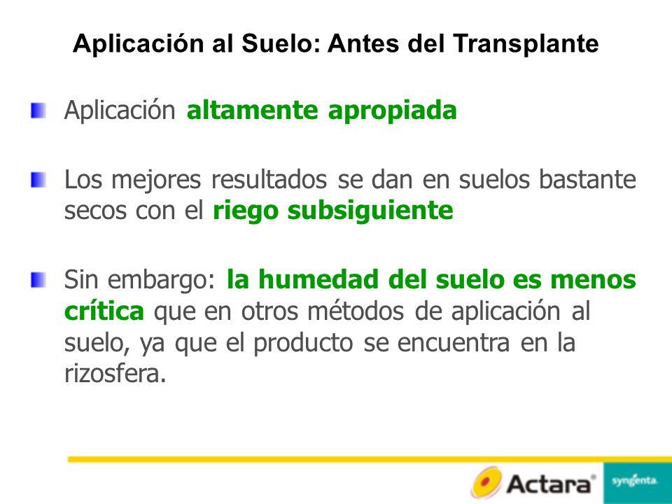 Aplicación al Suelo: Antes del Transplante
