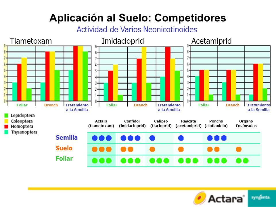 Aplicación al Suelo: Competidores