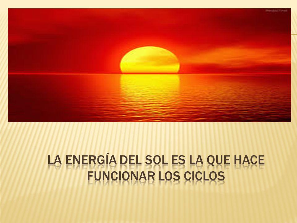 La energía del sol es la que hace funcionar los ciclos