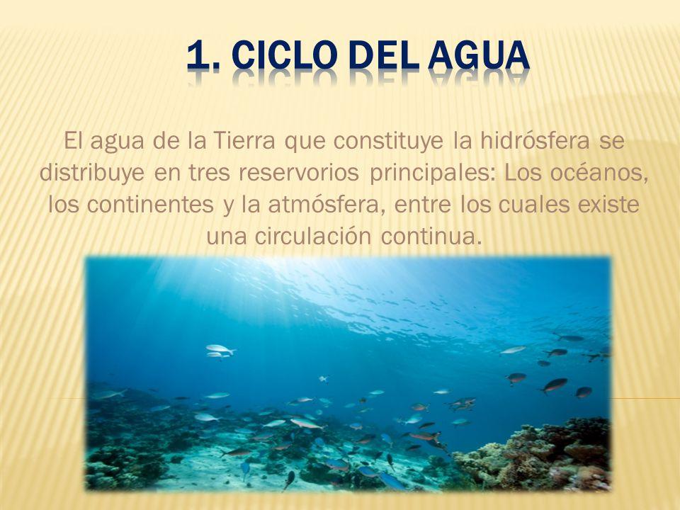 1. Ciclo del agua