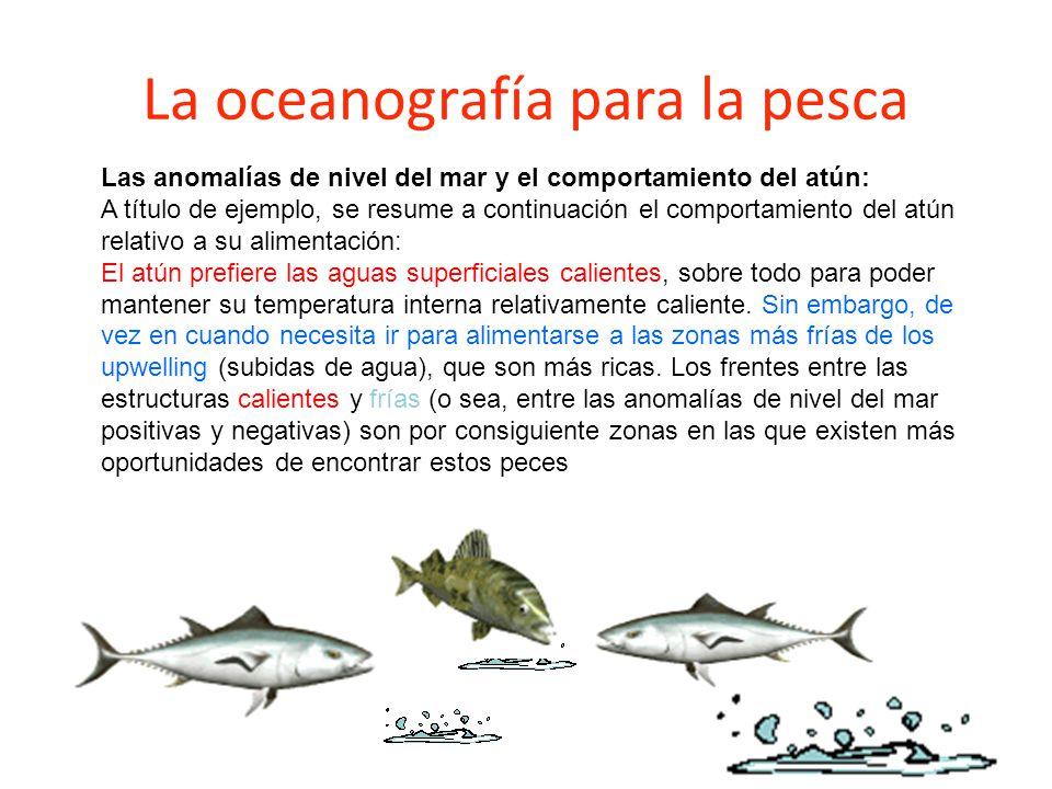 La oceanografía para la pesca