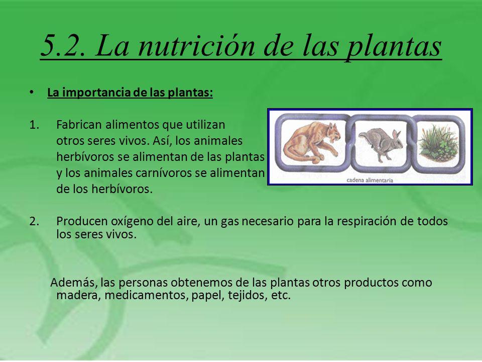 5.2. La nutrición de las plantas