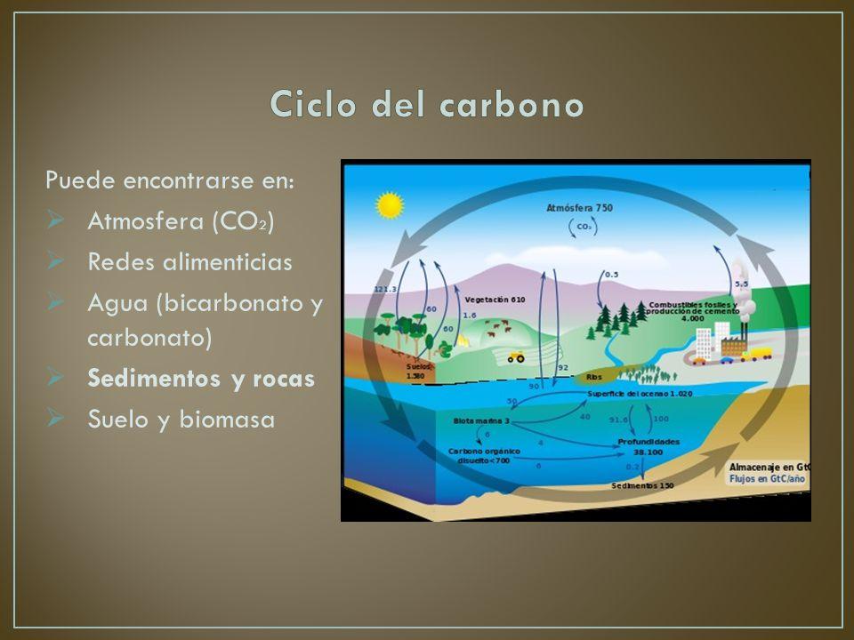 Ciclo del carbono Puede encontrarse en: Atmosfera (CO2)
