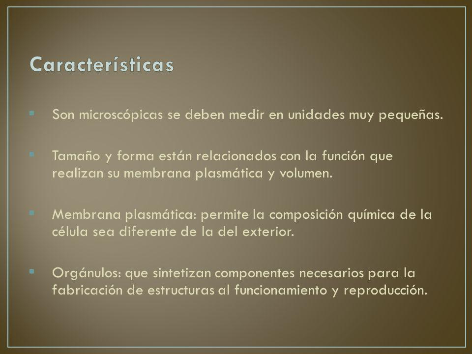 Características Son microscópicas se deben medir en unidades muy pequeñas.