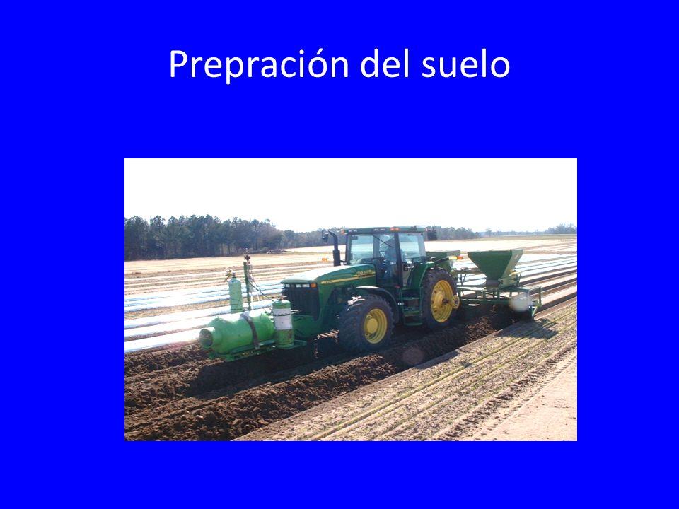 Prepración del suelo