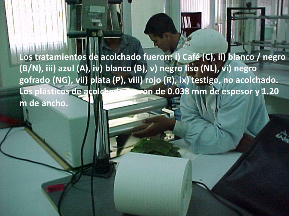 Los tratamientos de acolchado fueron: i) Café (C), ii) blanco / negro (B/N), iii) azul (A), iv) blanco (B), v) negro liso (NL), vi) negro gofrado (NG), vii) plata (P), viii) rojo (R), ix) testigo, no acolchado.