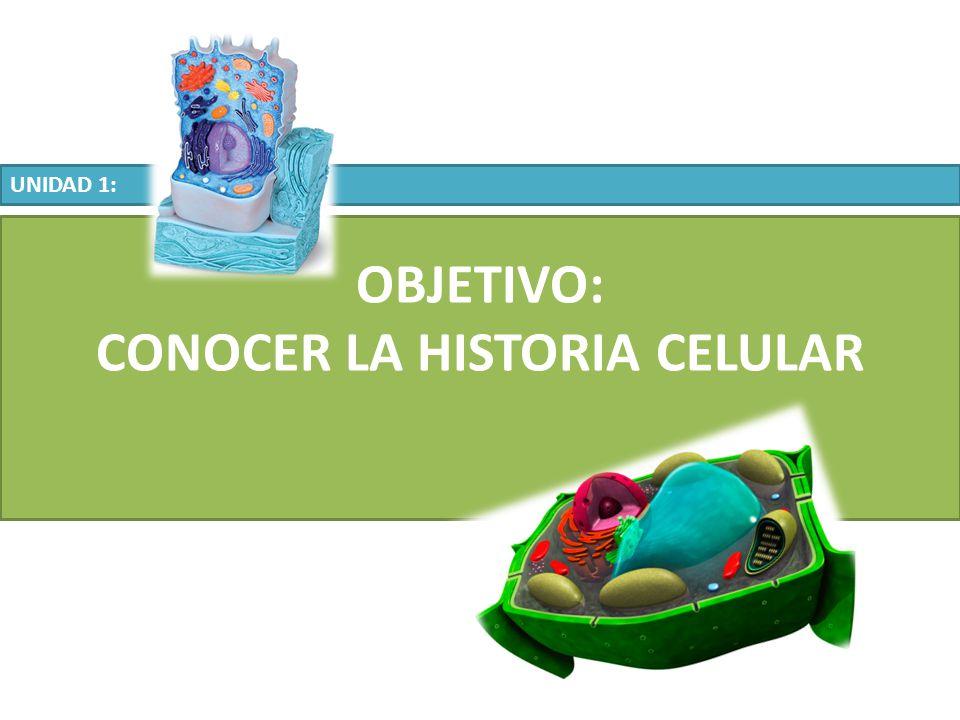 CONOCER LA HISTORIA CELULAR