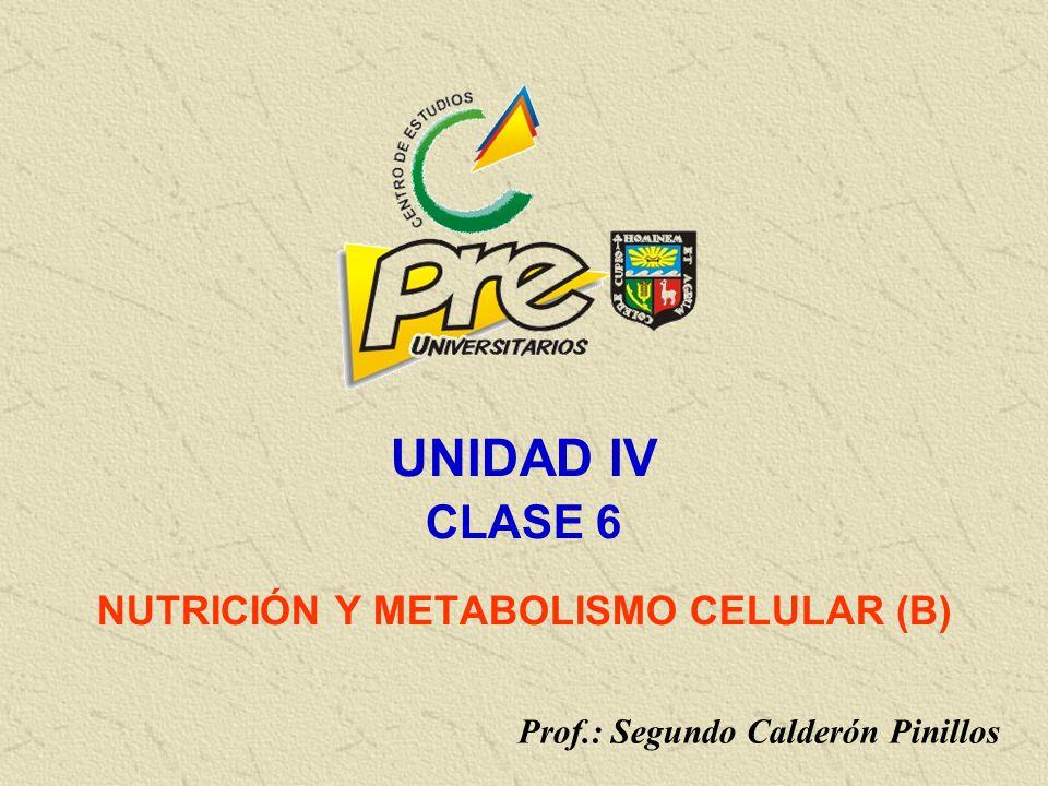 NUTRICIÓN Y METABOLISMO CELULAR (B)