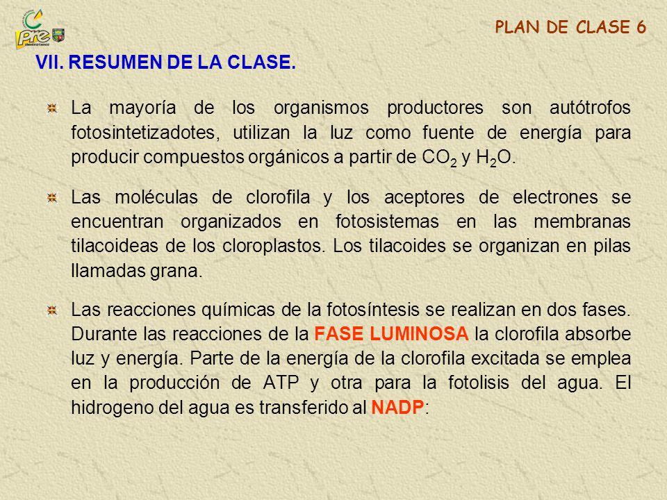 VII. RESUMEN DE LA CLASE. PLAN DE CLASE 6.