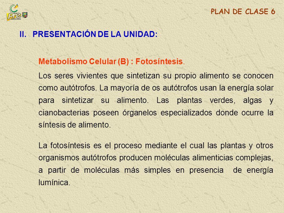 II. PRESENTACIÓN DE LA UNIDAD: