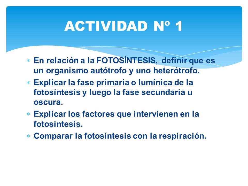 ACTIVIDAD Nº 1 En relación a la FOTOSÍNTESIS, definir que es un organismo autótrofo y uno heterótrofo.