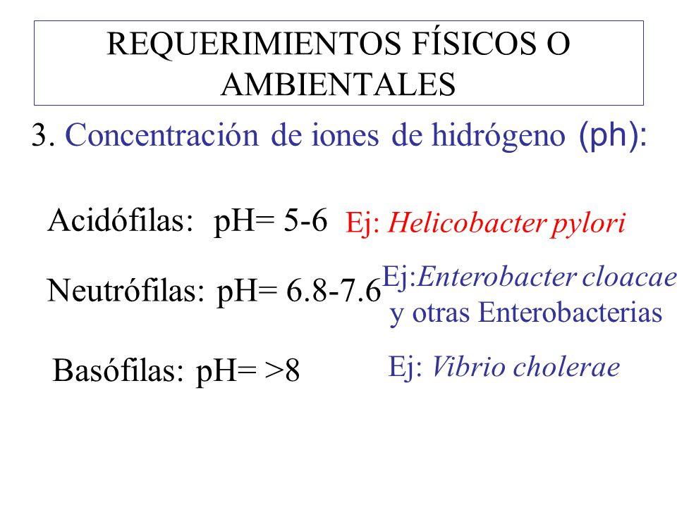 REQUERIMIENTOS FÍSICOS O AMBIENTALES