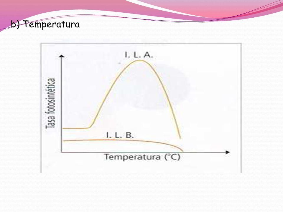 b) Temperatura