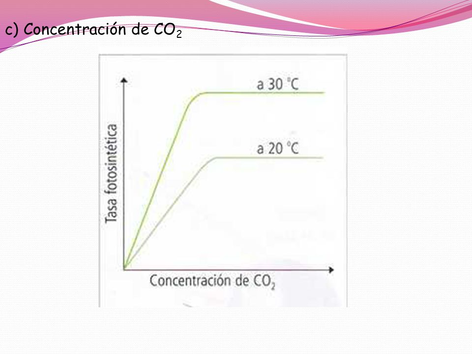 c) Concentración de CO2