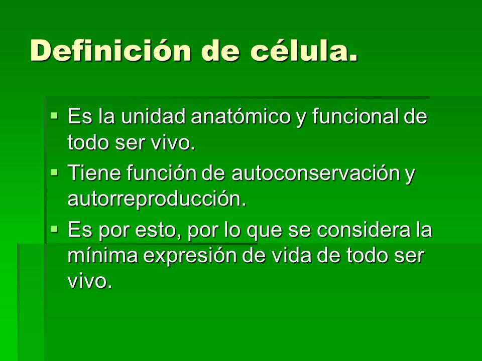 Definición de célula. Es la unidad anatómico y funcional de todo ser vivo. Tiene función de autoconservación y autorreproducción.