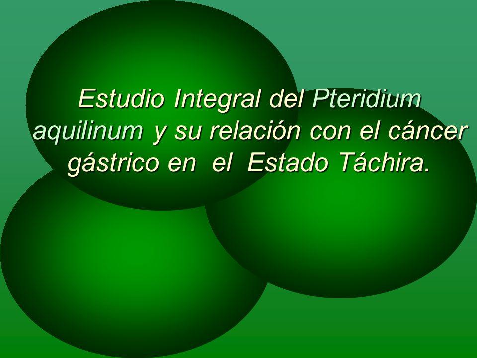 Estudio Integral del Pteridium aquilinum y su relación con el cáncer gástrico en el Estado Táchira.