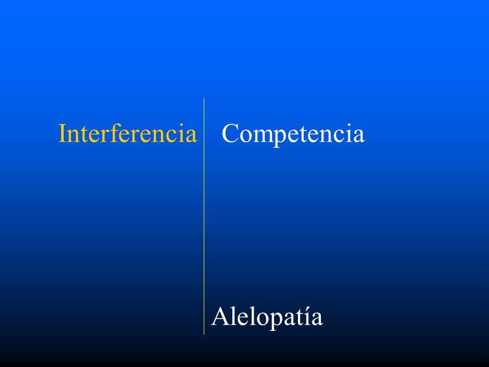 Interferencia Competencia