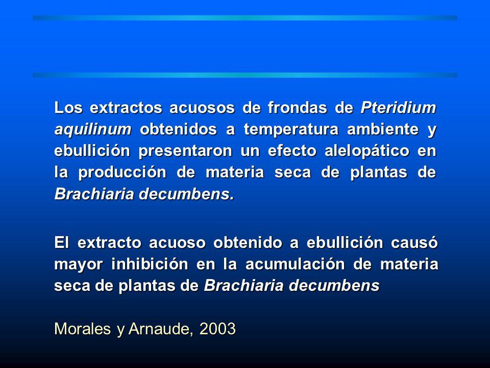 Los extractos acuosos de frondas de Pteridium aquilinum obtenidos a temperatura ambiente y ebullición presentaron un efecto alelopático en la producción de materia seca de plantas de Brachiaria decumbens.