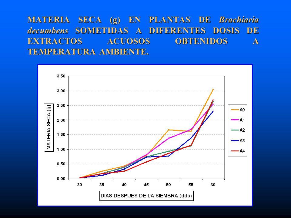 MATERIA SECA (g) EN PLANTAS DE Brachiaria decumbens SOMETIDAS A DIFERENTES DOSIS DE EXTRACTOS ACUOSOS OBTENIDOS A TEMPERATURA AMBIENTE.