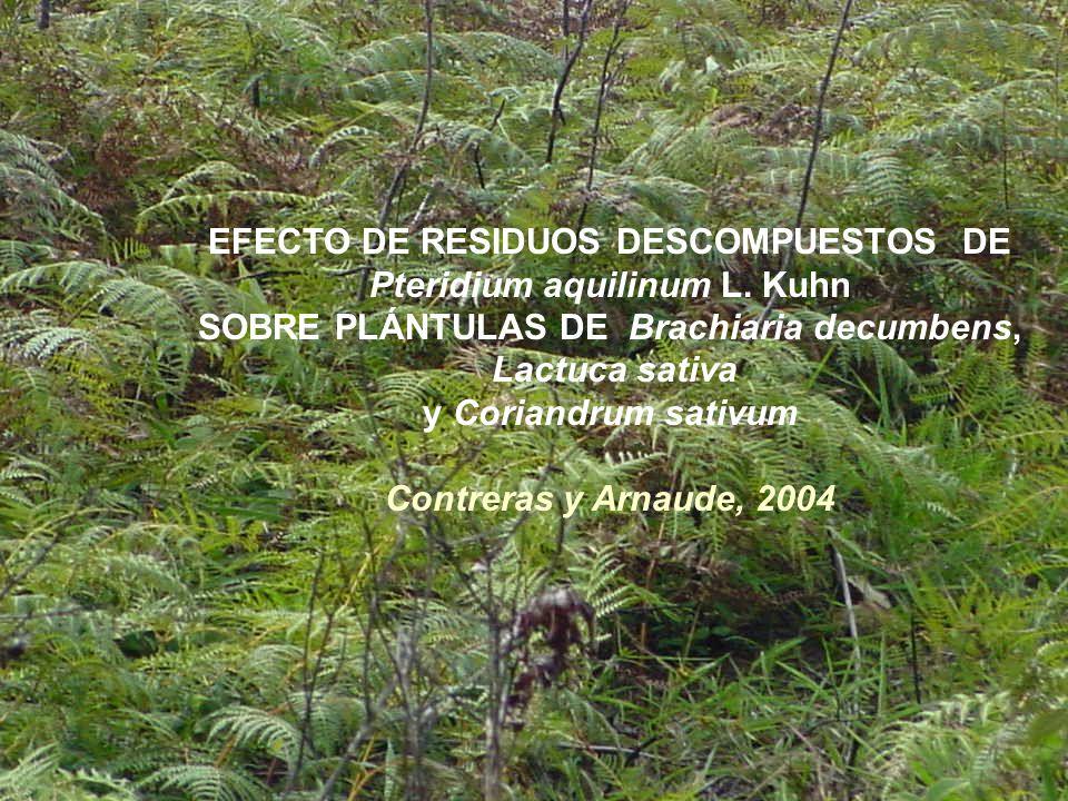 EFECTO DE RESIDUOS DESCOMPUESTOS DE Pteridium aquilinum L. Kuhn